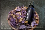 Blue Lotus Tincture