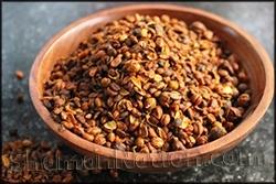 Intellect Tree Seed (Celastrus paniculatus)