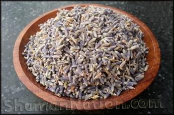 Lavender Flowers (Lavandula angustifolia)